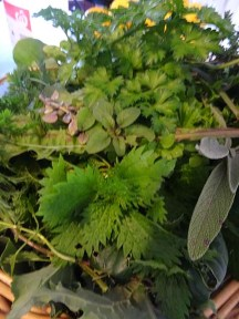 Weeds and leaves from the garden