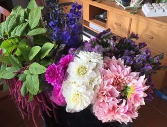 Fresh Flowers from Fernglen Farms1