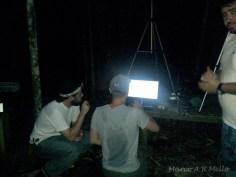 Gravação de ultra-sons em campo
