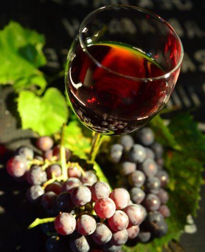 Бокал красного вина и веточка винограда