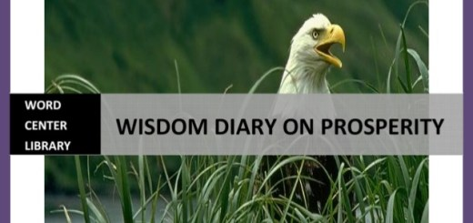 Download Wisdom Diary On Prosperity By Bishop David Oyedepo