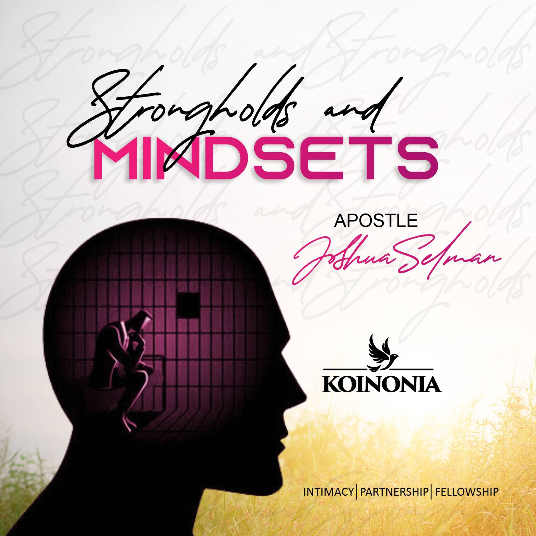 Strongholds And Mindsets Koinonia Abuja Sermon with Apostle Joshua Selman Nimmak