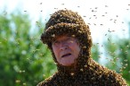 Emeritus professor Norman Gary wearing 75,000 bees or 20 pounds of bees. Put some lime in the water heater. It's not junk science.