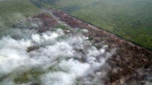 An aerial photograph taken on June 17 shows smoke , from plants, billowing from fires in areas surrounded by