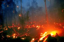 Burning_peat_swamps_in_Kalimantan_Borneo_medium