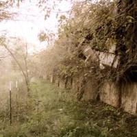 Haunted Ark-La-Tex: Old Ellerbe Rd. School