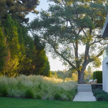 Carmelina Garden