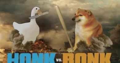 honk bonk, duck vs dog