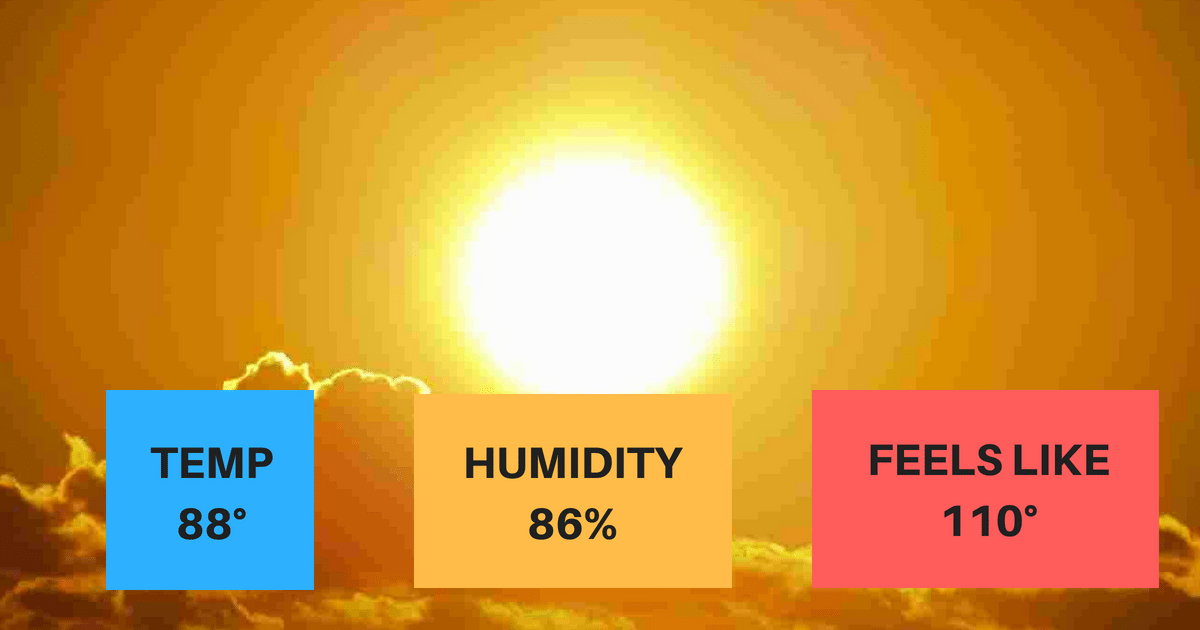 Humidity In Summer – Why It Makes Us Feel Hotter