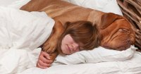 Why Dogs Should Sleep In Your Bed