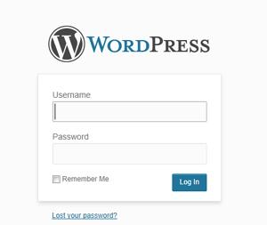 wordpress custom website