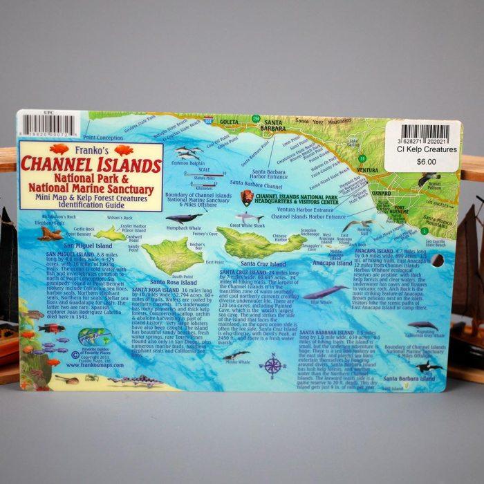 CI Kelp Forest Creatures Card