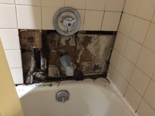 A resident of West Apartments B, who wished not to be named for her connection to campus residences, lived in his room all summer with a shower that looked like this. It wasn't fixed by the beginning of the 2015 Fall semester but was fixed about two weeks in.