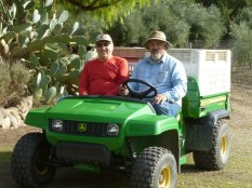 "SBTHP Executive Director Jarrell Jackman and Santa Inés Mission Mill Park Steward Wayne Sherman collecting olives in the ""Gator."" Photo by Mike Imwalle."