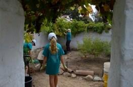 Team garden at work. Photo by Brittany Sundberg.