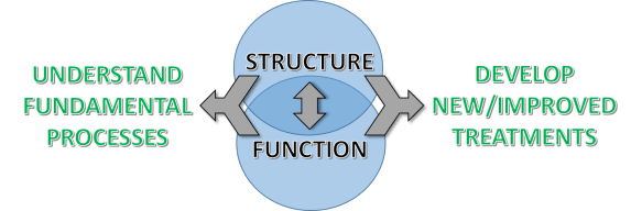 structure-function-picture