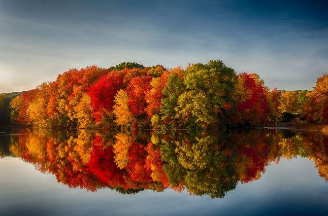 fall mirror