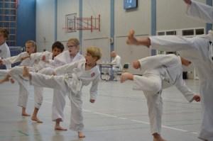 Bilder Zeitung Karate Lehrgang Beelen Dojo Kamakura (10)