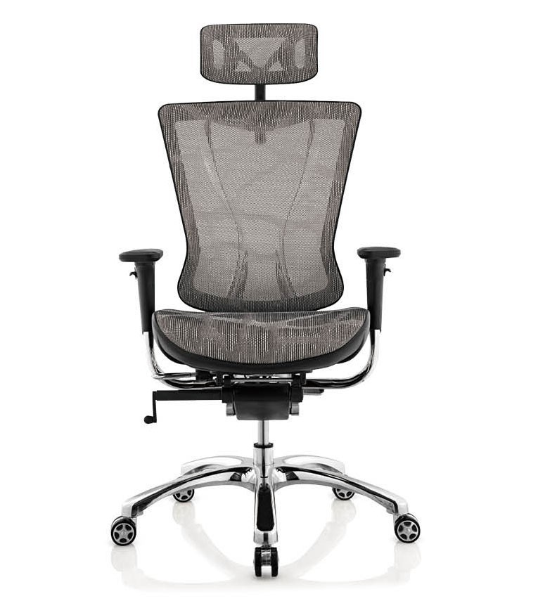 China Hot Sales Ergohuman Office Mesh Chair  Herman