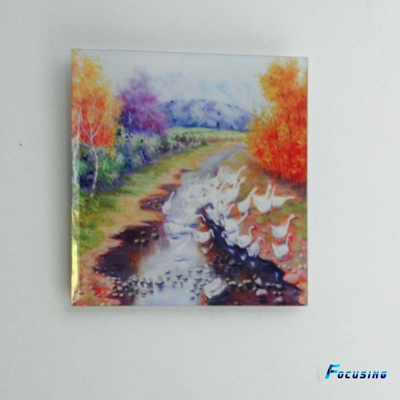 Decorative Tempered Glass Wall Art/glass Wall Picture