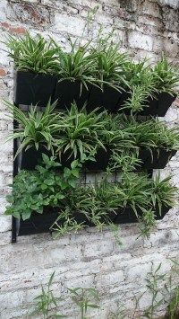 Vertical Gardening Decorative Wall Hanging Planters And ...