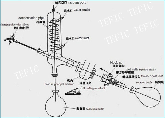 1~50l Explosion-proof Innovative Laboratory Vacuum Rotary