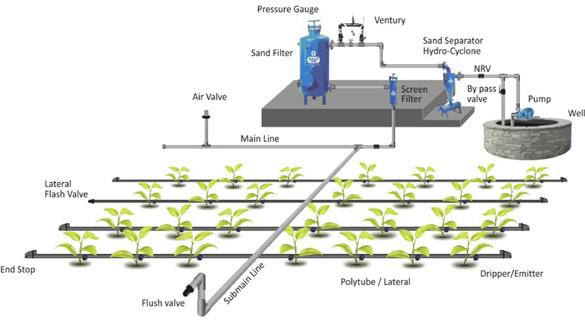 Farm Pond Advantages