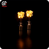 Glow In The Dark Led Earrings Wholesale - Buy Earrings,Led ...