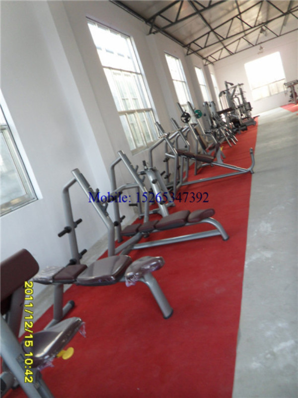 gym quality roman chair pride lift chairs luxury workout machines fitness equipment malaysia for sale