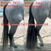 natural color false tail