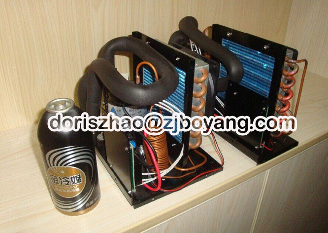 Dc 12v 24v 48v Mini Refrigeration System Condensing Unit