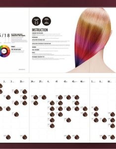 Ice cream hair color chart also dye abana himalaya rh nationafamily