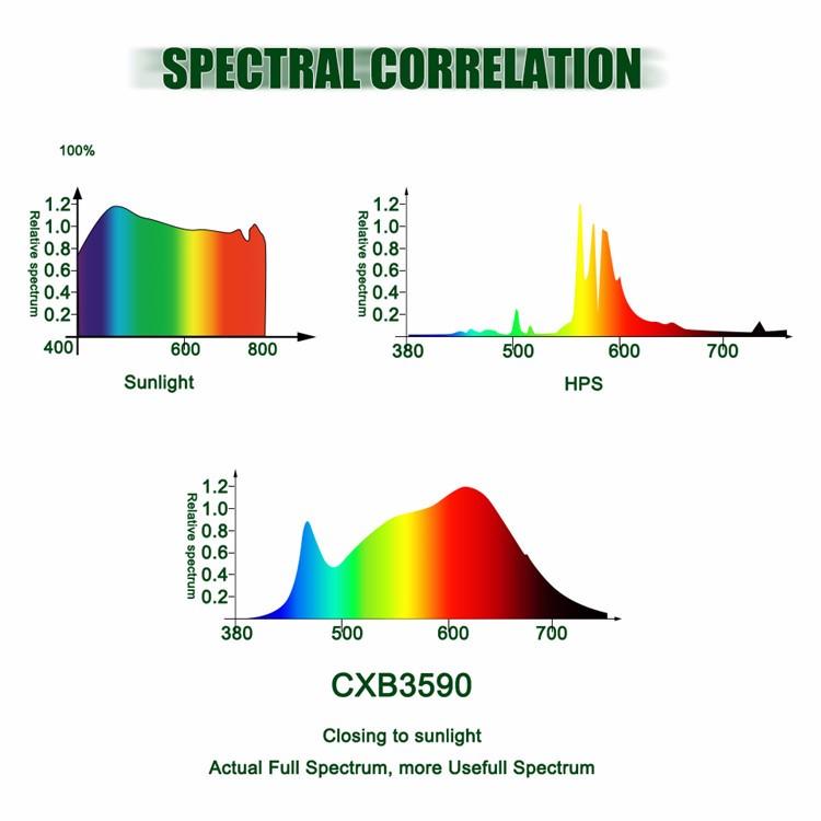 Full Spectrum Light Therapy