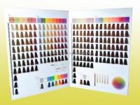 Oem Manufacturer Salon Professional Hair Dye Color Chart ...