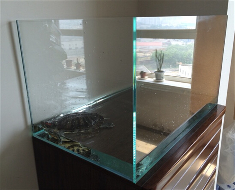 High Clarity Rimless Low Iron Glass Cube Garden Aquarium