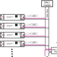Dali Led Driver Wiring Diagram Bulldog Wire Dimming Sr-2305-24-50w, View Driver, Sunricher Product Details From ...