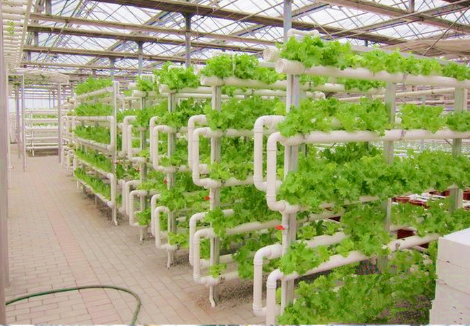 Cheap Hydroponic Grow Box Systems