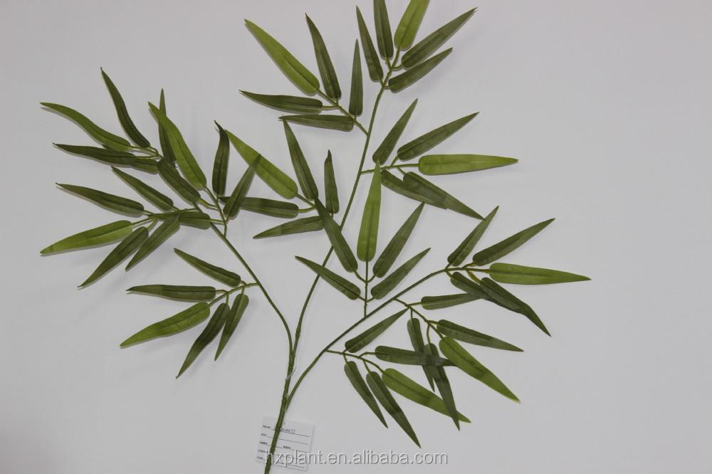 Gambar Asam Urat Segera Minum Rebusan Daun Bambu Usaha
