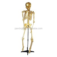 Plastic 5.4 Ft Life Size Hanging Halloween Real Human ...