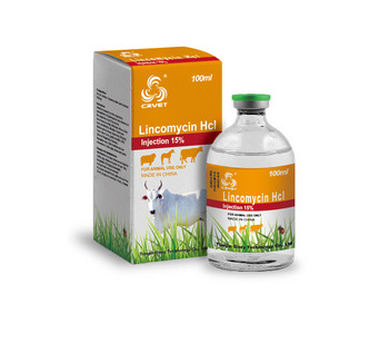 Lincomycin Hcl Injection For Veterinary Use - Buy ...