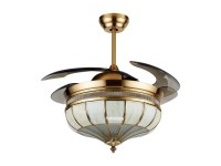 Noble decorative retractable lighting ceiling fan with ...