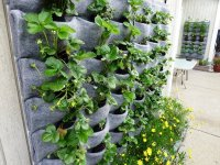 Wall Hanging Flower Pots,Outdoor Wall Planters,Flora Felt ...
