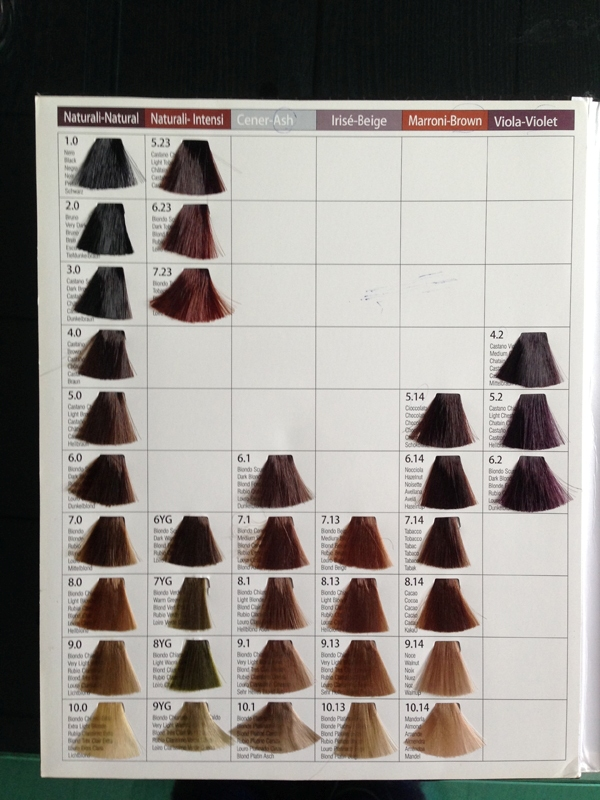 Oem 3 Folds Hair Dye Color Chart Color Swatch Book Buy