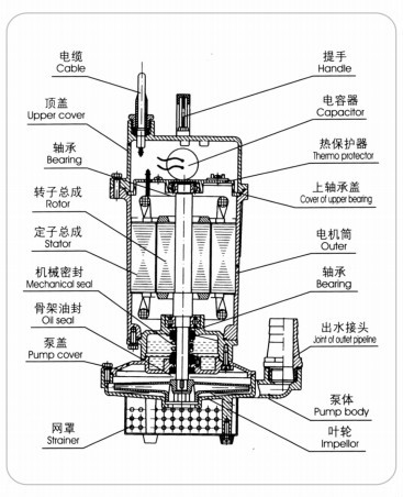 2 Inch Electric Submersible Pump I Inch Electric Well Pump