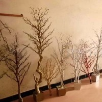 Gnw Wtr022 Dry Tree For Decoration White Winter Trees