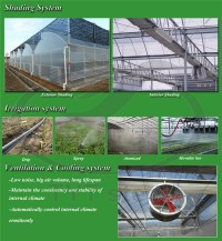 Greenhouse Cooling Pad Solar Steel Structure Greenhouse ...