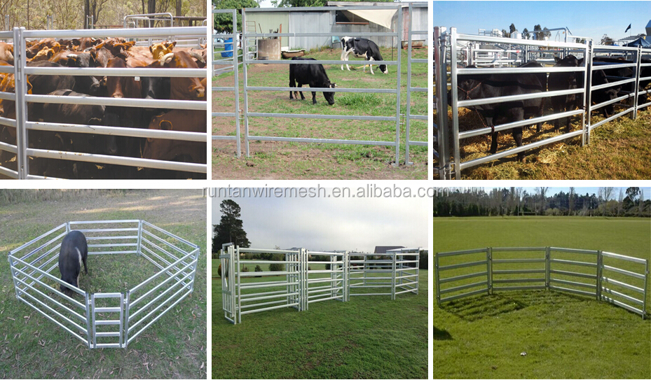 5foot10foot Cattle Corral Panel  Horse Corral Panel