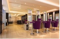 Chair Hair Salon Furnitures/purple Color Styling Chair ...