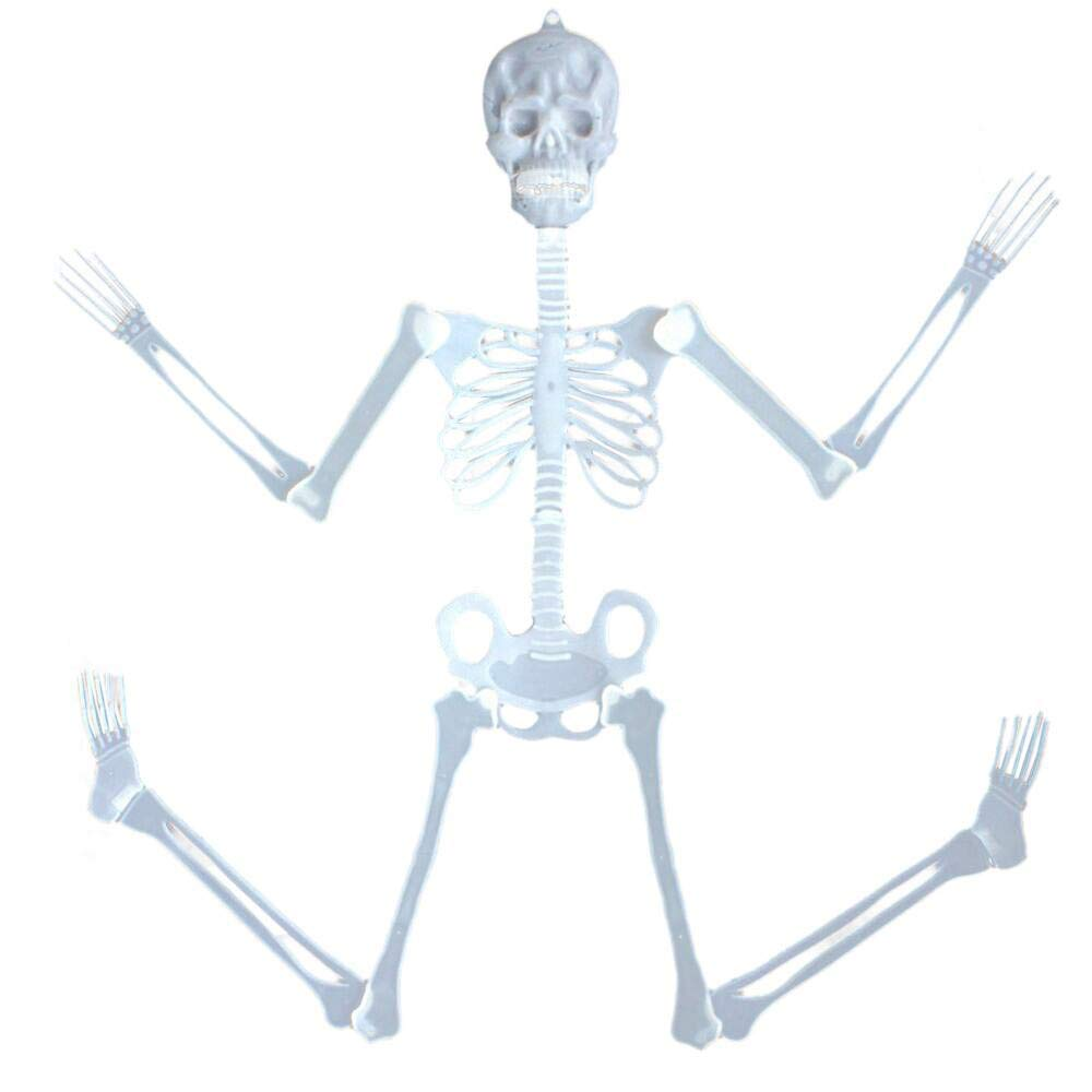 hight resolution of get quotations leewa 35cm luminous skull skeleton body scary halloween toy haunted house tricky prop halloween toy for