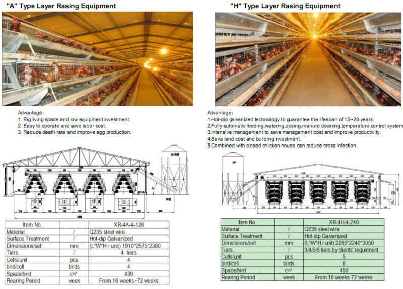 Automatic Control Low Cost Poultry Shedfarm For Broiler Layer Breeder Chicken Design  Buy